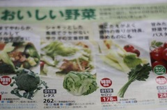 【野菜が高騰!】レタスを250円(税込262円)で買う方法