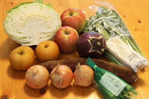 らでぃっしゅぼーやの食材宅配バラエティ野菜果物S