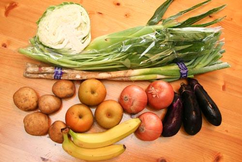らでぃっしゅぼーやの野菜・果物(キャベツ、えん菜、長葱、ジャガイモ、玉葱、茄子、とうもろこし、なし、バナナ)