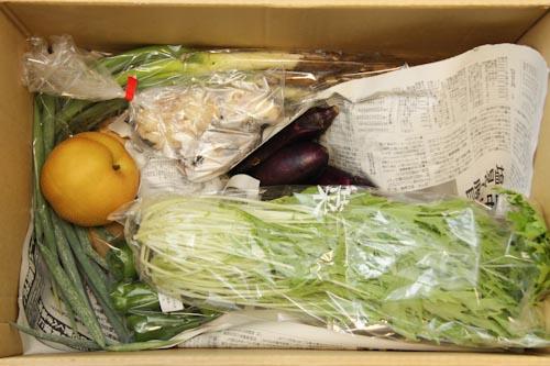 らでぃっしゅぼーや(2011年9月26日)配達分の梱包状態上には水菜、なす、和梨が見え、新聞紙の下には泥付の長ねぎ、じゃがいもなどがあります。