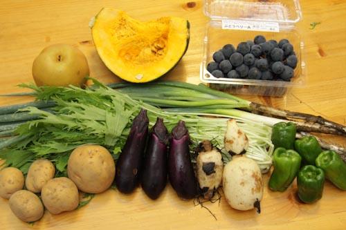 らでぃっしゅぼーやの野菜・果物(じゃがいも、れんこん、かぼちゃ、水菜、長ねぎ、なす、ピーマン、あきあかり、ベリーA(ぶどう))<br />2011年9月16日到着分