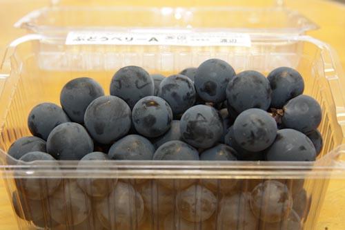 らでぃっしゅぼーやのベリーA(ぶどう) 生産地は山梨県