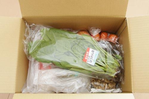 オイシックスのダンボールを開けると、上には葉物野菜が入っていました。