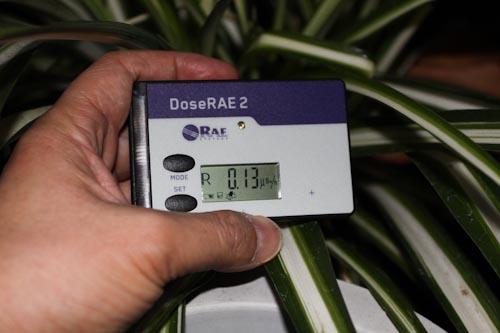 放射線測定器DoseRAE2 PRM-1200で、放射線線量率を測定 ベランダの植物
