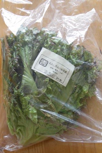 エコ サニーレタス(野菜くらぶ)パルシステムの野菜