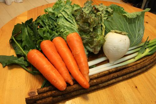 葉物野菜が多いですね!